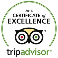 tanks-alot tank driving experiences tripadvisor certificate of excellence 2016